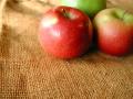 「 りんごダイエット 」